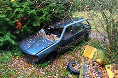 Peugeot 405 break 2 (Raphael Drake) Tags: abandonne abandoned urbex rurex decay decayed epave voiture car wreck peugeot 405 break
