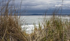 Framing Mt. A (1) (Bud in Wells, Maine) Tags: kennebunk kennebunkbeach maine spring mtagamenticus dunegrass