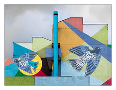 The Built Environment, South East London, England. (Joseph O'Malley64) Tags: thebuiltenvironment newtopography newtopographics manmadeenvironment manmadestructure building structure steelreinforcedconcretestructure reinforcedconcretestructure concretestructure concrete mural wallmural wall walls doves pigeons birds urbanarchitecture architecture architecturalphotography documentaryphotography britishdocumentaryphotography southeastlondon london england uk britain british greatbritain texturedconcrete chimney walkway prefabricatedconcretepanels geometric geometricshapes colours overcast clouds fujix fujix100t accuracyprecision