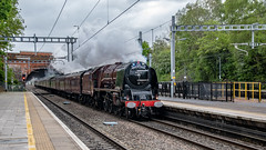 6233, Twyford, 27 April 2019 (14) (BaggieWeave) Tags: lms princesscoronation duchessofsutherland 6233 steamengine steamlocomotive steam steamtrain twyford berkshire gwml 462 pacific uk reading unitedkingdom england
