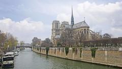 Notre Dame (joyhhs) Tags: 2016 composite december france paris architecture notredame canon river travel beautiful on1 photography