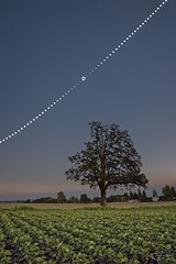 The Great Eclipse (joyhhs) Tags: 2017 america astrophotography august landscape oregon solareclipse usa canon leading lines field photography stack photoshop real astro solar eclipse time lapse on1