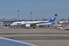 Boeing 787-8 Dreamliner (yuki_alm_misa) Tags: b7878 b7878dreamliner boeing b787 aircraft plane 東京国際空港 航空機 羽田 飛行機 rjtt hnd 羽田空港 haneda airplane aeroplane tokyointernationalairport