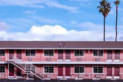 San Jose, California (bior) Tags: fujifilmxt1 xf56mmf12 sanjose motel hotel palmtree northfirst