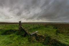 wetlands (Glen Parry Photography) Tags: glenparryphotography landscape anglesea d7000 landscapephotography nikon nikond7000 nikonphotographer nikonphotography sigma sigma1020mm wales ynysmon