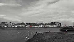 A Touch of Red. (mcginley2012) Tags: hss cameraphone huaweip20pro claddagh galway swan city thelongwalk ireland boat red coloursplash