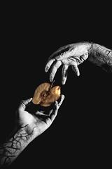 pecado original - Lil Eva (Santiago Capu Jurado) Tags: fotografía fotografíapublicitaria esquemadeiluminación luzprincipal temperaturadecolor portafolio exposición fotografíadigital profundidaddecampo enfoque selectivo obturación únicolentereflex diafragma distanciafocal ratiosdeluz universidadcentral proyecto fotográfico santiagojurado samuelsanabria carlosbecerra photography advertisingphotography lightingscheme mainlight color temperature portfolio exhibition digital depthoffield selective focus shutter singlereflexlens diaphragm focallength lightratios centraluniversity photographicproject