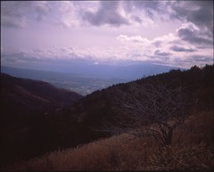 (✞bens▲n) Tags: mamiya 7ii velvia 50 80mm f4 film analogue 6x7 slide positive japan nagano venus line tree landscape mountains