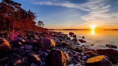 Sunrise II, Skatanniemi, East-Helsinki ☀️☀️ (Esa Suomaa) Tags: helsinki suomi finland suomenlahti scandinavia sunrise sun earlymorning sea sky trees planetearth olympusomd