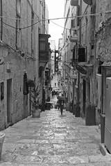 Umbrella (alicejack2002) Tags: valletta malta rain umbrella street bw monochrome leica summicron50mm