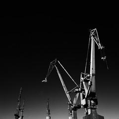 Gdansk (Bjørn Joachimsen) Tags: polen ilfordsfx200 grayscale bronicasqai 6x6 monochrome square mediumformat bnw filmisnotdead ilfordphoto film gdansk blackwhite analog poland