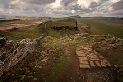 Walking the wall...... (Dafydd Penguin) Tags: walking rambling trail ramble hadrians wall national roman ancient monument northumberland empire trump path moor hill ridge leica m10 voigtlander 15mm super wide heliar f45