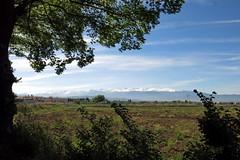 Sierra Nevada tras las ultimas nevadas (Micheo) Tags: spain vegadegranada paisaje landscapes sierranevada vega vistas naturaleza nature