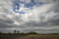 Farm Field (Notley Hawkins) Tags: httpwwwnotleyhawkinscom notleyhawkinsphotography notley notleyhawkins 10thavenue bottomland riverbottoms bottoms field trees landscape horizon sky clouds afternoon day missouri rural farm farmfield 2019 cloudysky charitoncountymissouri april canontse24mmf35lii