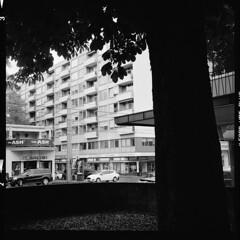 Stadt (tiltdesign2016) Tags: köln analogphotography adonalrodinal150 bw mittelformat yashicamat124g canoncanoscan9000f ilfordhp5400 fassade stadt street baum