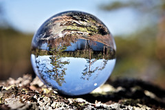 Spring (kalsink) Tags: lensball photography spring forest lake canon5d classic helios 44m manual vintage