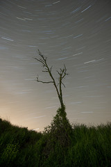 Tiempo juntos. Time together (Esgarmont) Tags: startrail night sky star longexposure together ecuadorceleste celestialecuador