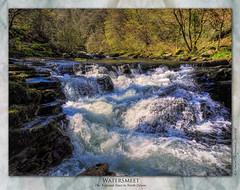 Watersmeet (setsuyostar) Tags: watersmeet thenationaltrust northdevon lynmouth waterfalls rivers waterblur nikoncoolpixp900 topazstudio spring2019 april2019 knehawley
