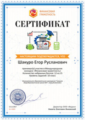 Sertifikat_proekta_finansy-school_ru_10869