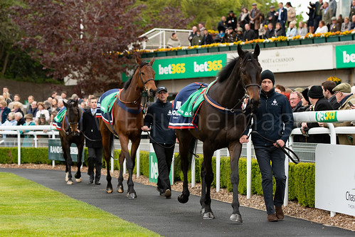 Parade Of Champions - Clan Des Obeaux, Cyrname and Frodon (2)