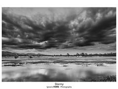 Stormy (Ignacio Ferre) Tags: stormy bw monocromo monocromático monochrome blancoynegro blackwhite blackandwhite paisaje landscape nube clouds embalsedesantillana manzanareselreal madrid españa spain nikon