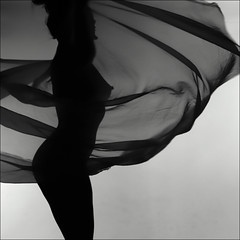 F_MG_1858-1-Canon 6DII-Canon 70-300mm-May Lee 廖藹淳 (May-margy) Tags: maymargy bw 黑白 人像 剪影 逆光 紗巾 舞蹈 線條造型與光影 天馬行空鏡頭的異想世界 心象意象與影像 台灣攝影師 桃園市 台灣 中華民國 fmg18581 portrait backlighting silhouette sheer dancing 脈動 motion linesformsandlightandshadow mylensandmyimagination naturalcoincidencethrumylens taiwanphotographer canon6dii canon70300mm maylee廖藹淳 taoyuancity taiwauan taiwan repofchina