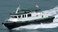 SEA FALCON 3-1 SINGAPUR 201903