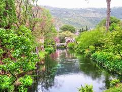 Fiume a Ninfa (Wronny) Tags: italia italy giardino giardini ninfa di garden parco park lazio latina cisterna sermoneta