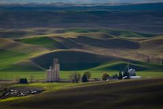 The View From Steptoe Butte (Mark Polson) Tags: palouse steptoe steptoebutte wa washington goldenhour evening spring