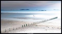 fantaisie malouine (pileath) Tags: saint malo high key personnage chien mer see plage beach paysage artistique brise lames sun sunshine coucher de soleil break water
