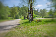 2019 Bike 180: Day 56, May 1 (suzanne~) Tags: bike bicycle park munich bavaria germany may1 olympicpark 2019bike180 lensbaby sol45