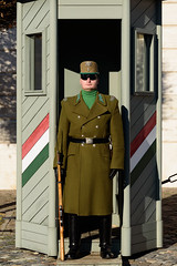 Guardia del Castillo de Buda, Palacio de Sándor. (David Andrade 77) Tags: budapest guardia soldado castillo buda palacio sándor garita 24105mmf4dgoshsm|a soldier portrait retrato militar