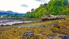 Abandoned ships on the Isle of Mull. (peterileypics) Tags: boat ship shipwreck coast sea beach lightroom colour nature travel scotland isleofmull mull
