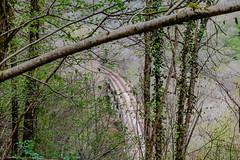 68-Voie ferrée (Alain COSTE) Tags: 2019 forêt hautevienne lavarache limousin nikon ocb printemps randonnée eymoutiers france