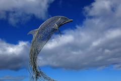 First Dolphin of the year! (Troonafish) Tags: carnstading dolphin sculpture art artist creative metalsculpture dolphinsculpture portsoy portsoyharbour aberdeenshire scotland scottish marinelife dolphins bottlenosedolphin sculptor gavintroon gavtroon 2019 canon canon5d2 canon5dii canon5dmark2 canon5dmarkii 5d2 5dii 5dmark2 5dmarkii morayfirth wildlife wildlifeart tourism landmark thesea sealife