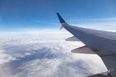 Black Valentine: Spring of 2019 (J. David Buerk) Tags: 737900 boeing boeing737900 canon chicago davidbuerkphoto dulles dullesairport dullesinternational dullesinternationalairport ef24105mmf4lisusm eos eosr iad jdavidbuerk jdavidbuerkphotography ohare ohareinternationalairport ord united unitedairlines washington washingtondc washingtondullesinternationalairport aerial airfield airline airlines avgeek aviation flight fly flying jdavidbuerkcom jdbphoto terminal wwwjdavidbuerkcom baker westvirginia unitedstatesofamerica