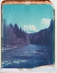 Hier, la rivière (ccedric.com) Tags: graflex polaroid 4x5 argentique montagne rivière forêt ccédric ccedriccom