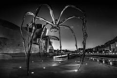 La-Mamá (monsugar) Tags: arquitectura españa bilbao araña blancoynegro luces sombras art photo street