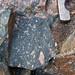 Clast-rich impact pseudotachylite (Sudbury Breccia, Paleoproterozoic, 1.85 Ga; Windy Lake Northwest roadcut, Sudbury Impact Structure, Ontario, Canada) 50