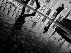 Un nouveau regard (Alexandre DAGAN) Tags: arles france noir blanc black white noiretblanc noirblanc blacknwhite blackandwhite blackwhite ville city water eau reflet reflection panasoniclx100 panasonic lx100 dmclx100 workshop photo