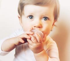 Nippii-Freezable-Teething-Pacifier (nippii) Tags: teething pacifier freezable frozen cold binky nippii teethers