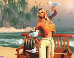 Seagulls (alexandra sunny) Tags: haveunequal avada catwa maitreya aviglam truth hair seagulls ocean secondlife fashion woman female blog blogger