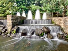 Spectre (simonmgc) Tags: botanicgardens fountain goldcoast longexposure spectre timelapse