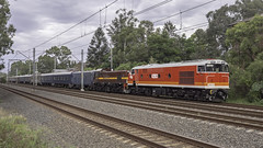 """Craig Prior's Locomotive 42103 named """"Chumster"""", with loco 4702, as Lachlan Valley Railway's run 8L83 from Sydney Central Station to Parkes for the 2019 Trundle ABBA Festival (Paul Leader - Paulie's Time Off Photography) Tags: 421class 8l83 abbafestival locomotive42103namedchumster passengertrain 42103 4702 locomotive4702 lachlanvalleyrailway lvr olympus olympusem10 paulleader vintagetrain heritagelocomotive diesellocomotive diesel locomotive transport transportation train travel tourist rail railway railroad passenger railpage:class=103 railpage:loco=42103 rpaunsw421class rpaunsw421class42103"""