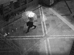 ... a rainy day..... (明遊快) Tags: monochrome bw japan street pedestrian urban city lines rain walking puddle umbrella