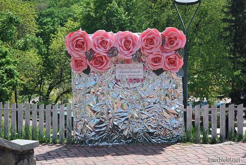 Київ, Співоче поле, тюльпани Травень 2019 InterNetri Ukraine 019