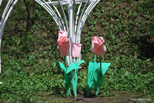 Київ, Співоче поле, тюльпани Травень 2019 InterNetri Ukraine 018