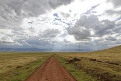 Waiting for the rain, follow the road to nowhere - Ngorongoro Crater - Tanzania (tivitto) Tags: tanzania tanzanie road route nuages pluvieux ngorongoro
