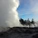 geyser at whakarewarewa