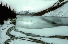 Banff NP, Canada: Lake Louise in Winter (rocinante11) Tags: winter lake lakelouise banff nationalpark snow water trees blue film fujifilm fujivelvia fujichrome xpro crossprocess alberta canada